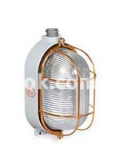 Светильник взрывозащищенный Rino-Ex круглый 100w IP65, 830072 Palazzoli